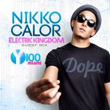 Nikko Calor- Y100 Electric Kingdom Guest Mix 2014