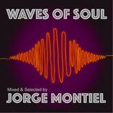 Waves Of Soul by Jorge Montiel