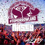 Nilsey - Tomorrowland 2013 Mix (AleXey's part)