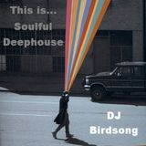 This is Soulful Deephouse