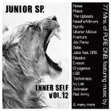 Junior SP. - InnerSelf Vol.12