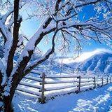 Alex Favell - Winter Warm Up Classics 2