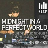 KEXP Presents Midnight In A Perfect World with DJ Bricks
