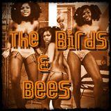 GJ25 - The BIRDS & BEES - Broadcast 26-05-12 (GielJazz - Radio6.nl)