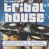 The Best of Tribal House(CD1)