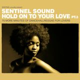 Sentinel Sound - Hold On To Your Love Pt 3