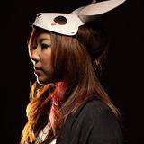 Follow The Asian Rabbit [ MXT ]