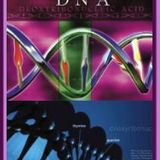 DNA Acsension - Rainbow Frequency