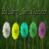 Soul Sculptor _ Spiritual Révolution