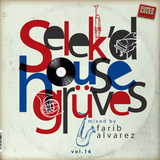 selek'd house grüves vol 16 - mixed by farib alvarez