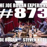 #873 - Steven Kotler