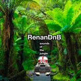 RenanDnB - Sounds of the Jungle