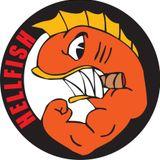Hellfish @ Xinix D-Struct (White Donkey Freeparty) (02-03-2002)