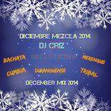 Nuevo Año Mezcla (Mixed By DJ Criz) (Bachata, Merengue, Cumbia, Tribal, Duranguense)