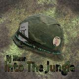 Dj Hizer - Into The Jungle