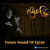 Aly and Fila - Future Sound Of Egypt 326 ( 03-02-2014 )