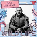 Black Butter Wildlife Mix - M.A.X