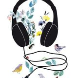 Músicas Mestizas de visita en Colombia!  Sin pasaportes de la @Radio Meztiza!