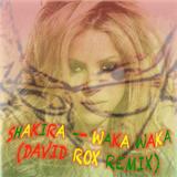 Shakira - Waka Waka (David Rox Remix)