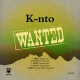 WANTED (Hot Lunch Mix)