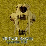 Vintage Bangin' Chapter XXII - Mixed by Piera