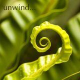 Teddy C - Unwind