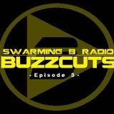 SWARMING B RADIO BUZZCUTS 2017 - Episode 3