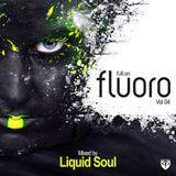 Liquid Soul full on fluoro vol.4