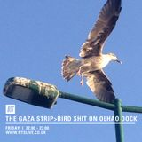 The Gaza Strip>> Bird Shit on Olhao Dock - 14th September 2018