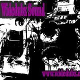 Boomtown Fair Radio - The Widedubz Sound Show
