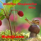 HulajLama_Wielka Majoowka Mix