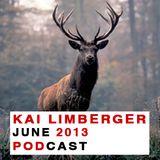 Kai Limberger Podcast June 2013