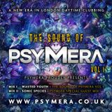The Sound of PSYMERA Vol I - Mixed by Wasted Youth