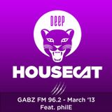 Deep House Cat - Gabz FM 96.2 Botswana - 96 Minute Mix - March '13