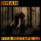 Bman Fiya 12