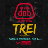 Arena dnb radio show - vibe fm - mixed by TREi - November 18th 2014