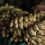 Spice Mélange 09.07.2015 Bananacafé (Part 1)