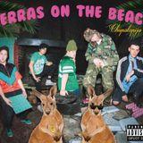 Perras on the Beach - BDB (06/11/16)