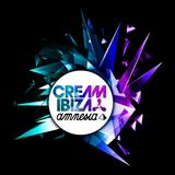 Bassjackers - Live @ Cream Amnesia Ibiza (Spain) 2014.07.12.