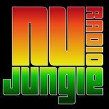 Arctical #001 Live on Nu Jungle Radio
