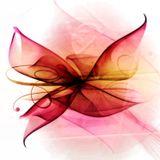Butterfly vol.11
