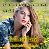 Deep in the Groove 029 (14.04.17)
