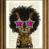 Crooklyn's Funktastic Caturday mix