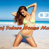 Best of Future House Music #1 by Dendy