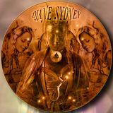 Psykadelic Consciousness - Dj Sydney Beatport mix promo  @   http://dj.beatport.com/dj_sydney