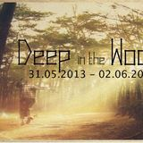 Alex Haas @ Deep in the Woods_pt.2