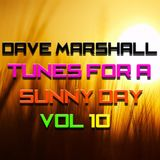 Dave Marshall - Eclectic Mix Vol 10 - Tunes For A Sunny Day