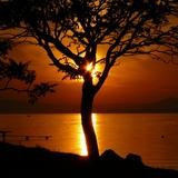 Dave-deep&su sunshine vol 9
