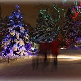 CHRISTMAS IN THE PARK 1