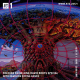 Colours (Roots Special) - 7th February 2017